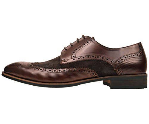 Asher Green Footwear Mens Brown Genuine Leather and Waxy Suede Wingtip Oxford Dress Shoe : AG1034-065